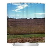 The Back Lane Shower Curtain