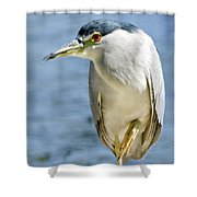 The Balancing Act  Shower Curtain