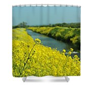 The Banks Of Yellow Shower Curtain