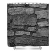 The Battery Wall In Black And White Shower Curtain