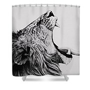 The Battle Shower Curtain