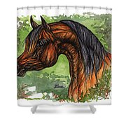 The Bay Arabian Horse 1 Shower Curtain