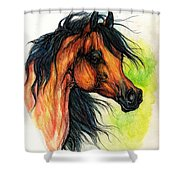 The Bay Arabian Horse 11 Shower Curtain