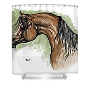 The Bay Arabian Horse 12 Shower Curtain