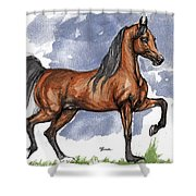 The Bay Arabian Horse 17 Shower Curtain