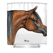 The Bay Arabian Horse 18 Shower Curtain