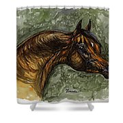The Bay Arabian Horse Shower Curtain