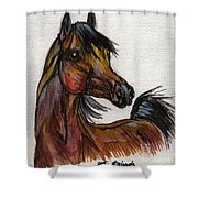 The Bay Horse 1 Shower Curtain