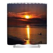 The Beach At Dawn Shower Curtain