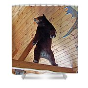 Come And Get Me Down From Here...signed The Bear Shower Curtain