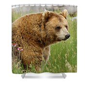 The Bear Dry Brushed Shower Curtain