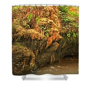 The Bearded Garden Shower Curtain