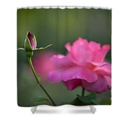 The Beauty And The Promise Shower Curtain