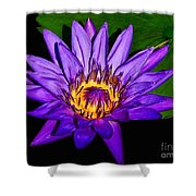 The Beauty Of A Water Liliy Shower Curtain
