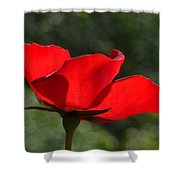 The Beauty Of Imperfection Shower Curtain