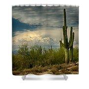 The Beauty Of The Desert Southwest  Shower Curtain