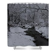 The Beauty Of Winter Shower Curtain