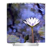 The Bee And The Dragonfly Shower Curtain