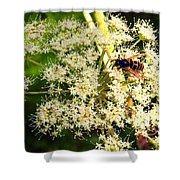 The Bee And The Flowers At Troldhaugen Shower Curtain