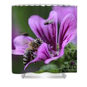 The Bee Shower Curtain