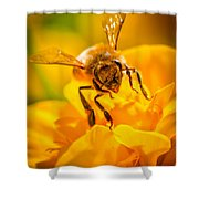 The Bee Gets Its Pollen Shower Curtain