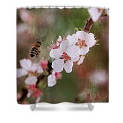 The Bee In The Cherry Tree Shower Curtain