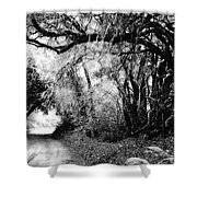 The Bend In The Road Bw Shower Curtain