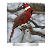 The Best Of The Season.. Shower Curtain