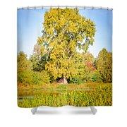 The Big Autumn Poplar Shower Curtain