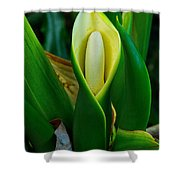 The Big Bloom Shower Curtain