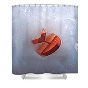 The Big Freeze Shower Curtain