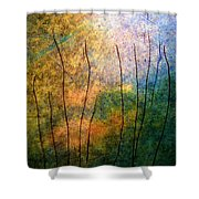 The Big Rock Candy Mountain Shower Curtain