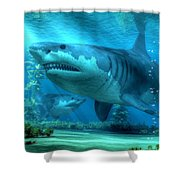 The Biggest Shark Shower Curtain