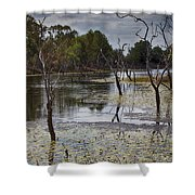 The Billabong V12 Shower Curtain