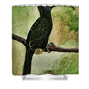 The Bird Shower Curtain