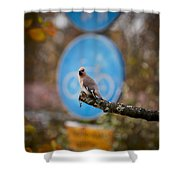The Bird Without A Bike Shower Curtain