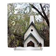 The Birdhouse Kingdom - The Pileated Woodpecker Shower Curtain