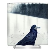 The Black Crow Knows Shower Curtain