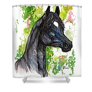 The Black Horse 1 Shower Curtain