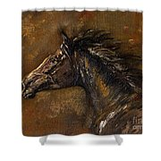 The Black Horse Oil Painting Shower Curtain