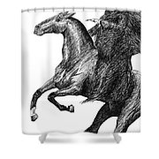The Black Rider Shower Curtain