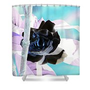 The Black Rose Shower Curtain