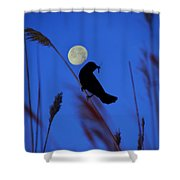 The Blackbird And The Moon Shower Curtain
