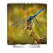 The Blue Dragonfly  Shower Curtain
