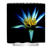 The Blue Lotus Of Egypt Shower Curtain