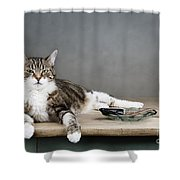 The Boss Shower Curtain by Nailia Schwarz