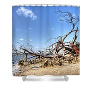 The Bottle Tree Shower Curtain