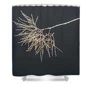 The Branch Shower Curtain