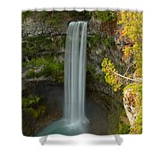 The Brandywine Plunge Shower Curtain