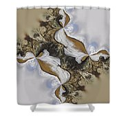 The Bridge Between The Deserts Shower Curtain